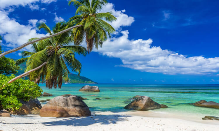 Best Beach Vacation Destinations You Should Visit This Summer: Asia's Best